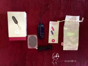 Caja, mando a distancia, cable USB, manual de instrucciones, vibrador azul acabado brillo y funda blanca para guardarlo