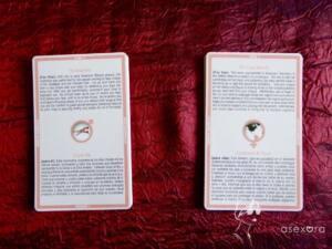 Dos pilas de cartas. La pila de la izquierda muestra las cartas del chico, en el centro de las misma aparece el símbolo masculino. Las de la chica están a la derecha y tienen también el símbolo femenino en el centro