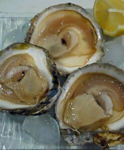 Tres ostras planas abiertas de gran tamaño.